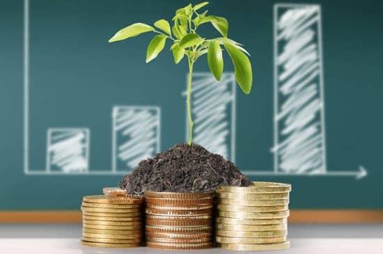 Правила инвестирования в бизнес проекты