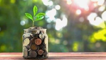 Какой открыть валютный вклад в Сбербанке для физических лиц — обзор
